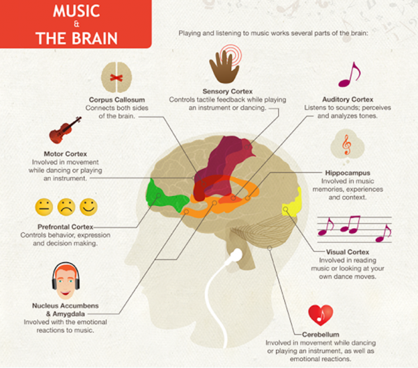 music-and-brain